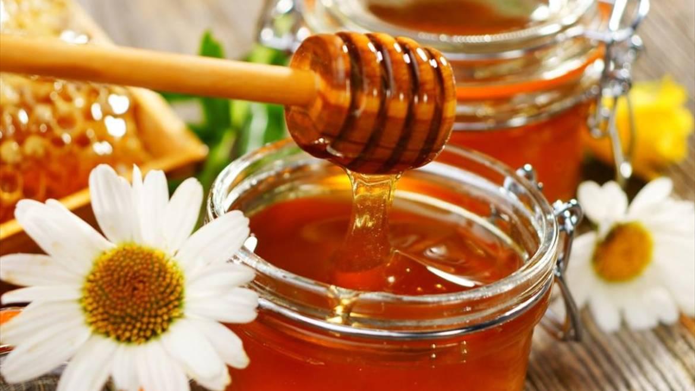 Μέλι Ολύμπου