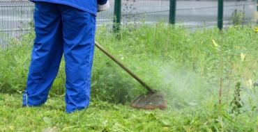 Ανακοίνωση Δήμου Δίου-Ολύμπου για τον καθαρισμό ιδιωτικών οικοπέδων